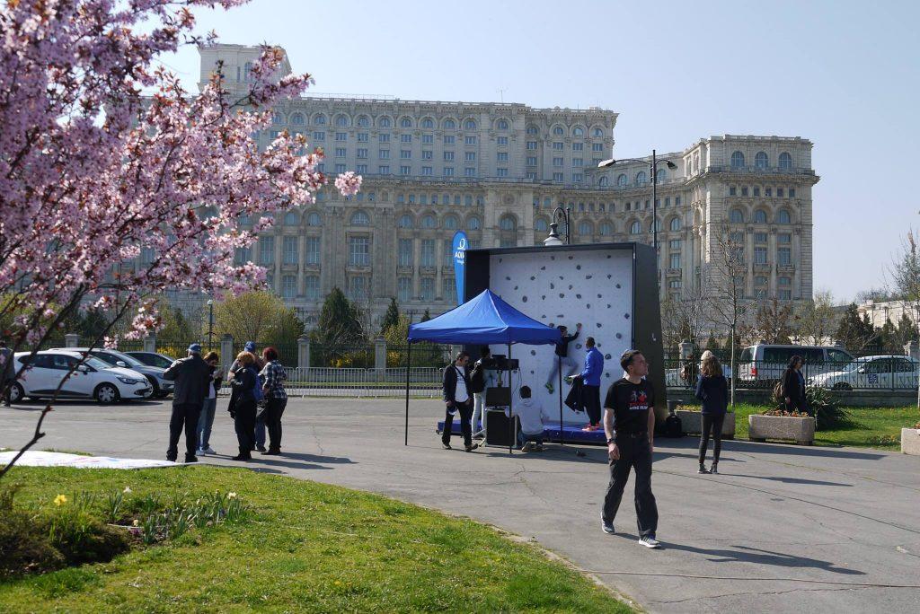 Artwall Sensor București