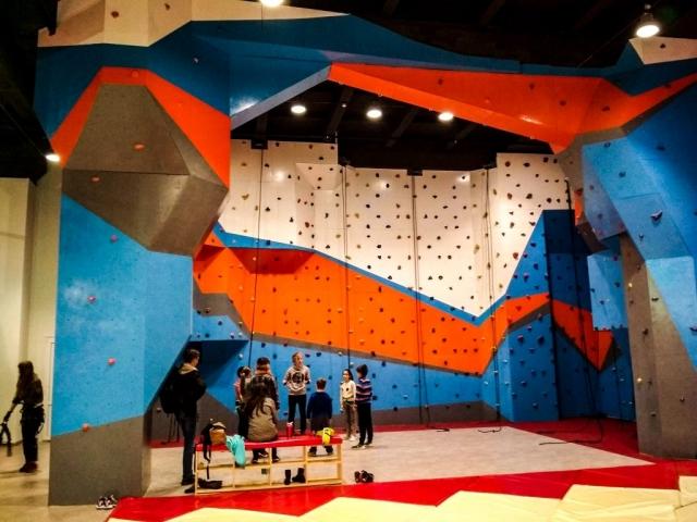 Artwall Alfa Climbing